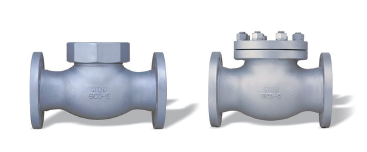 FLANGED CHECK VALVE(20K)