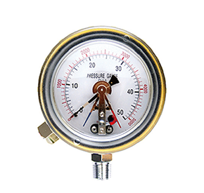 Explosion pretected pressure gauge with contact